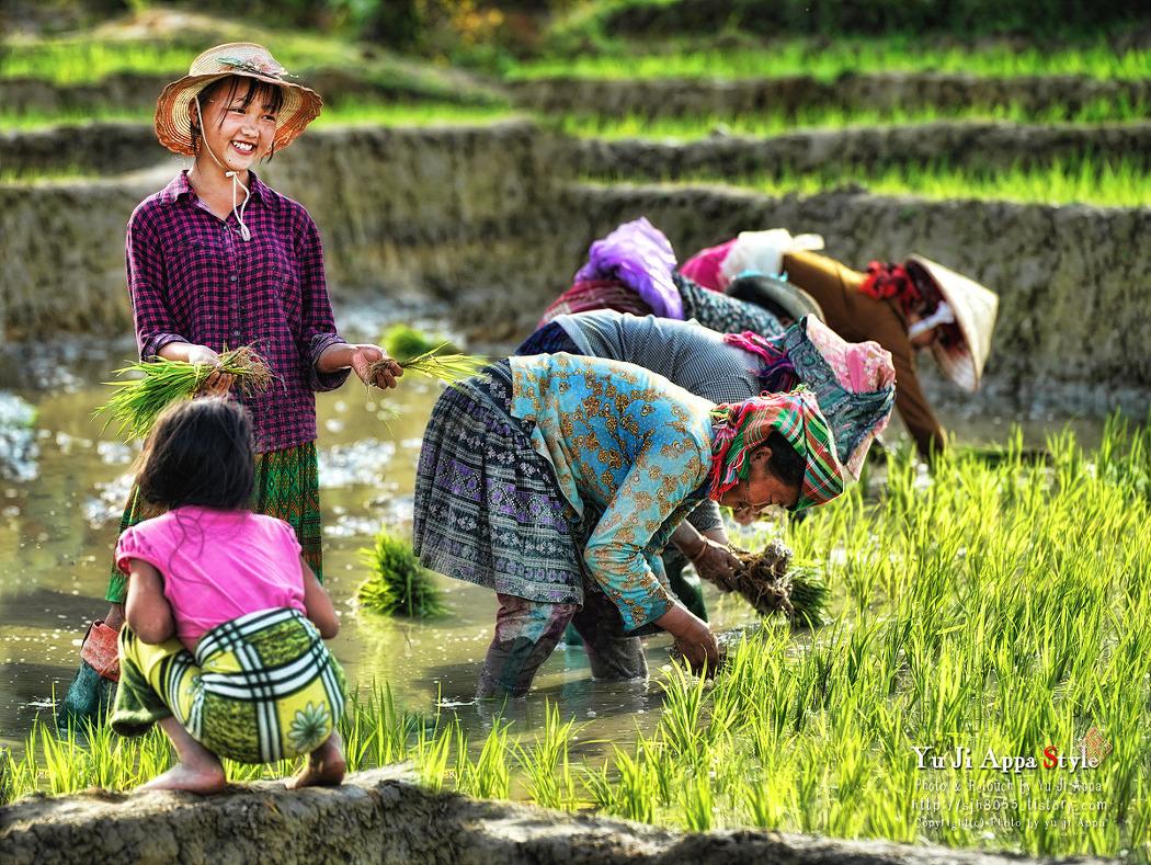 베트남(풍경+인물)...6
