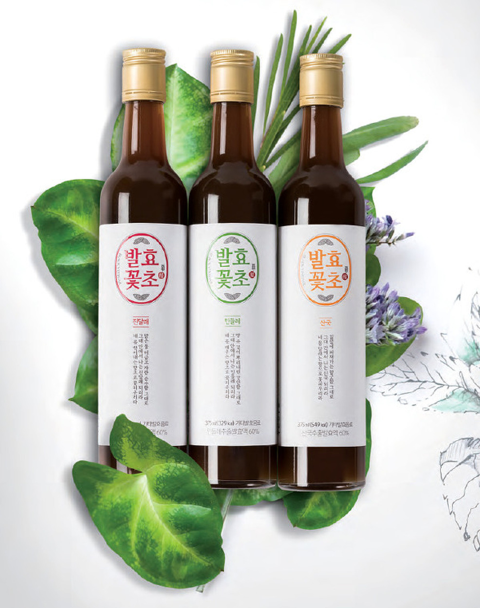 요즘 뜨는 대세 건강음료 '마시는 꽃' 발효꽃초를 드셔 보세요!