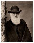 찰스 다윈, 인류의 자연 및 정신 문명에 커다란 발전을 가져오다.