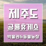 미취학 아이들 제주도 여행코스 제주공룡휴게소 박물관 & 동물농장