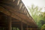 파주 벽초지수목원 분위기 사진모음(니콘D800 185mm .4g) -2-