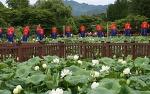 행복바라미 봉선사 연꽃축제와 더불어 피아노폭포와 다산생태공원이 있는 남양주 탐방