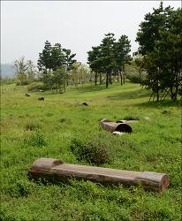 인천중구회관 국민체육센터