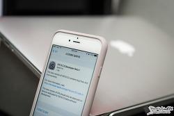 iOS 9.3.3 베타1 업데이트, 버그 수정 및 안정성 향상