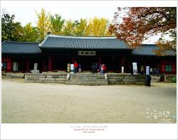 서울에서 가을을 느낄수 있는 대표적인 장소인 성균관
