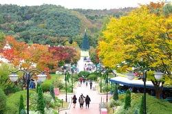 가을 품은 에버랜드에서 인생사진 건질 나만의 '포토스팟' 대공개!