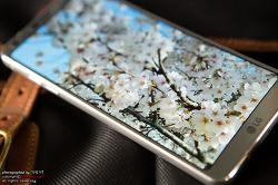 밀스펙을 획득한 LG G6와 함께 떠난 경주 보문단지 벚꽃놀이!