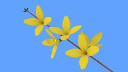노란 개나리 꽃