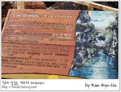 [적묘의 갈라파고스]계곡수영장 라스 그리에따스 스노클링,Las Grietas