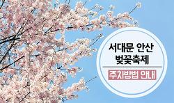 2017년 서대문 안산 벚꽃축제! 주차 방법, 주차장 안내!