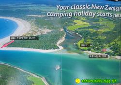 뉴질랜드 길 위의 생활기 647-뉴질랜드에서 잡히는 조개류