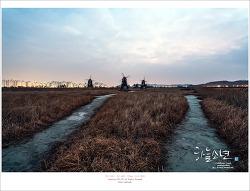 새벽에 일어나 다녀온 인천여행 소래생태습지공원