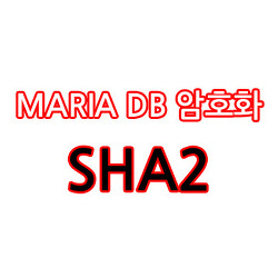 MariaDB 암호화(SHA2), 데이터타입 설정 방법