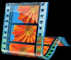 영상 편집 프로그램