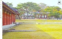 가을 고궁  - 창경궁에서 #1