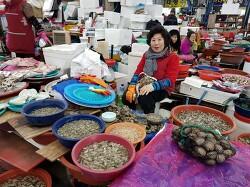 서천특화시장 갈목수산 - 굴, 바지락, 꼬막, 판매