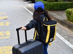 샤오미 캐리어 여행용 24인치 가방 가성비 만족 후기