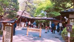 도쿄 자유 여행 3대 정원 코이시카와 코라쿠엔
