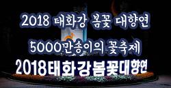2018 태화강 봄꽃 대향연 5000만송이의 꽃축제 울산축제 울산행사