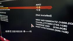 타무즈 RX550 3D TLC와 SLC캐쉬을 이용한 빠른 성능 체감하자