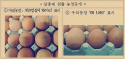 살충제 계란 감별번호
