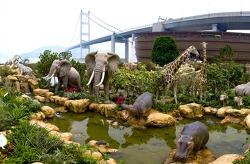홍콩의 여행지: 노아의 방주 Noah's Ark