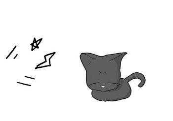 고양이 나라