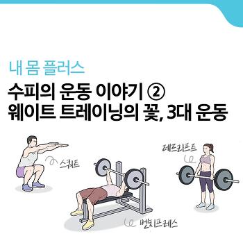 [수피의 운동 이야기] #2. 웨이트 트레이닝의 꽃, 3대 운동 [내 몸 플러스]