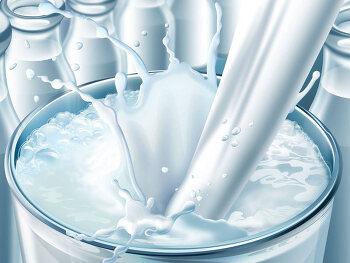 칼슘의 보고 우유가 몸에 해롭다고?