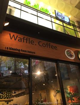 홍대 데이트 코스 테마 카페 양카페 땡스네이쳐