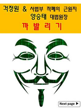 국정원 대선 여론조작