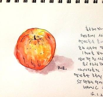 엄마가 보내주신 밀양 사과 한 박스