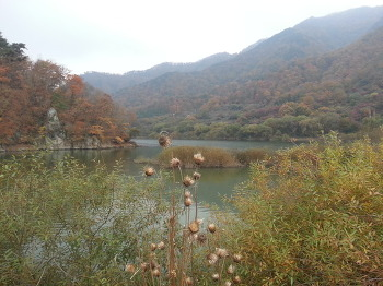 가을 여행^^
