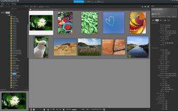 Corel PaintShop Pro 한글패치 완료... 테스트 중