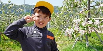과일꽃 향으로 가득한 <수원 과수공원>