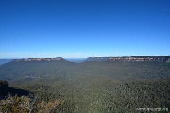 [호주여행] 광활한 대자연의 경이로움, 시드니 블루마운틴