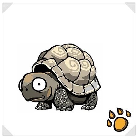 거북이 아이폰케이스 그리고 거북이 라이프. +  +  .