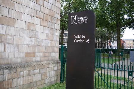 9월, 런던 자연사 박물관 야생정원, Natural History Museum Wildlife Garden, 2014