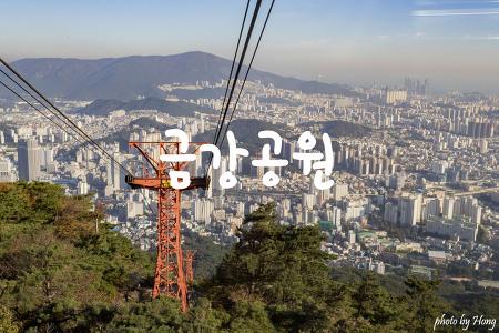 [부산 여행] 금강공원 케이블카 타고 내려다보는 부산시내와 금정산 단풍