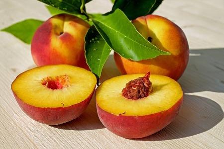 여름 과일, 제대로 보관하는 법! (수박, 복숭아, 체리 보관법)