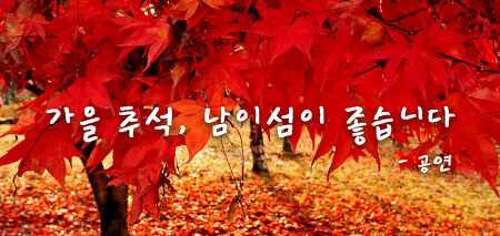 [남이섬/추석/공연] 가을 추석, 남이섬이 좋습니다 - 공연