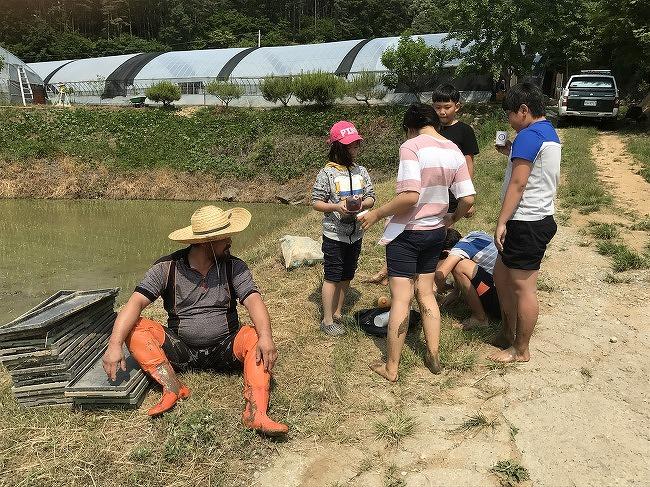 먹을거리 공동체 4월 쌀주문 받습니다.