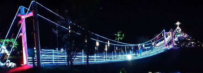 밤에 피는 아름다운 풍경, <태안빛축제>를 소개합니다