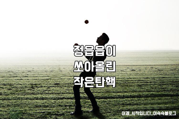 탄핵정국 과정 총정리 (feat.국경일)