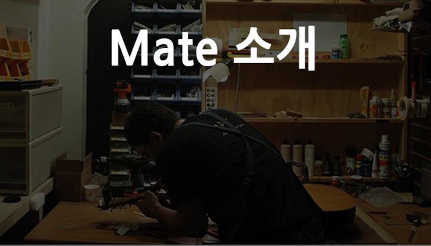 메이트 소개