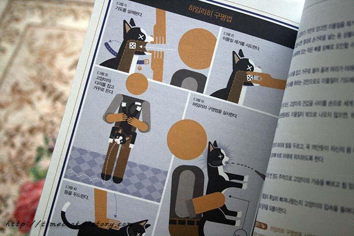 고양이책 추천, 고양이책, 고양이 상식사전, 고양이 정보, 고양이 책, 고양이 사진