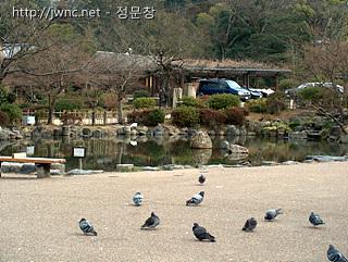 새들의 낙원, 일본