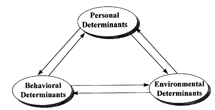social learning theory and organized crime From the social control theory and the social learning theory we see the basis for the interactional theory of 1987  organized crime strain theory the social .