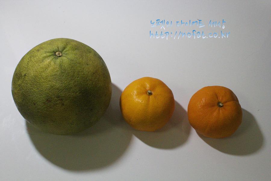 자몽, 귤, 삼색과일다이어트체험기, 과일다이어트, 여배우다이어트, 여배우삼색과일다이어트, 과일다이어트시행착오, 갈아먹는다이어트, 갈아먹는과일 사진 #2