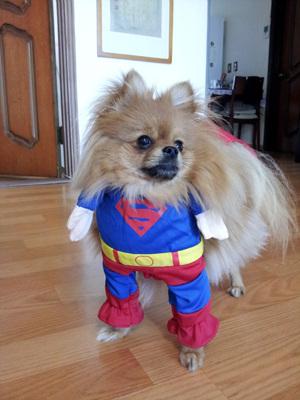 개남이 슈퍼맨 되다
